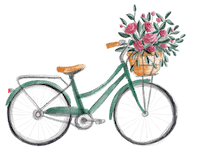 Bicycle copy